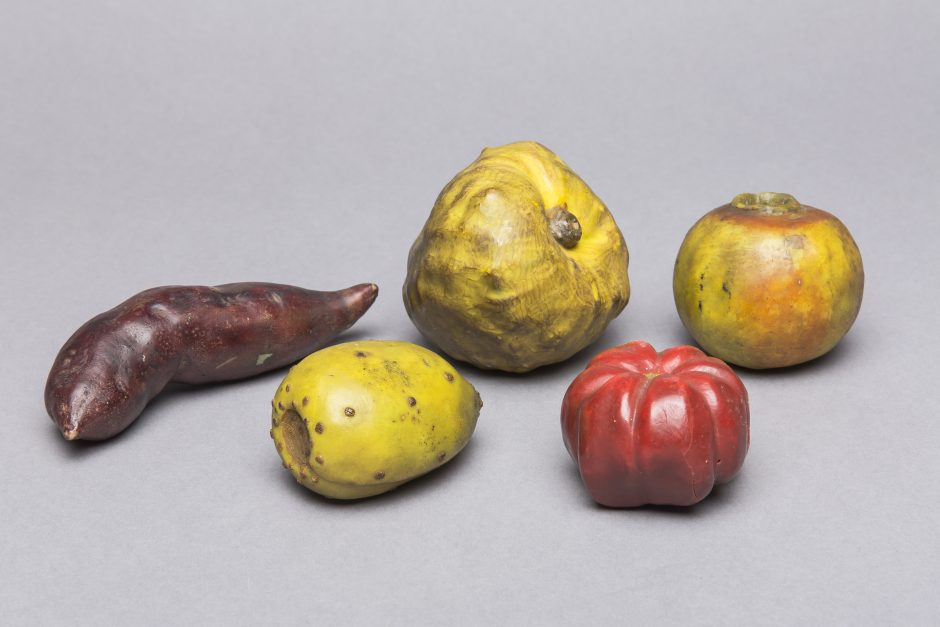 Five wax fruits, sweet potato, cactus fig, chirimoya, tomato, passion fruit
