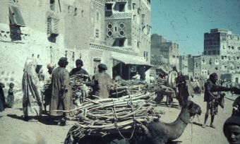 Holzmarkt, Sanaa, Jemen, Marktszene, Kamel, Händler, Gebäude, Häuser, Architektur, Gewehrkolben