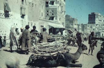 Wood market, Sanaa, Yemen, market scene, camel, merchants, buildings, houses, architecture, gunstock