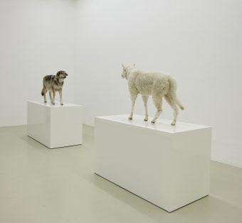 """Kunstwerk """"Wolf im Schafspelz - Schaf im Wolfspelz. Ein Verwandlungskunststück"""".Timm Ulrichs, 2005/2010"""