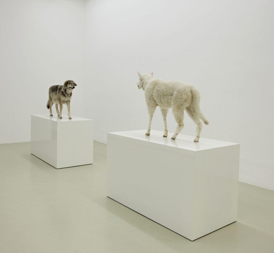 Kunstwerk Wolf im Schafspelz - Schaf im Wolfspelz. Ein Verwandlungskunststück.Timm Ulrichs, 2005/2010