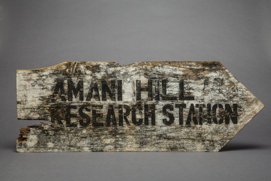 Wegweiser zur Forschungsstation Amani