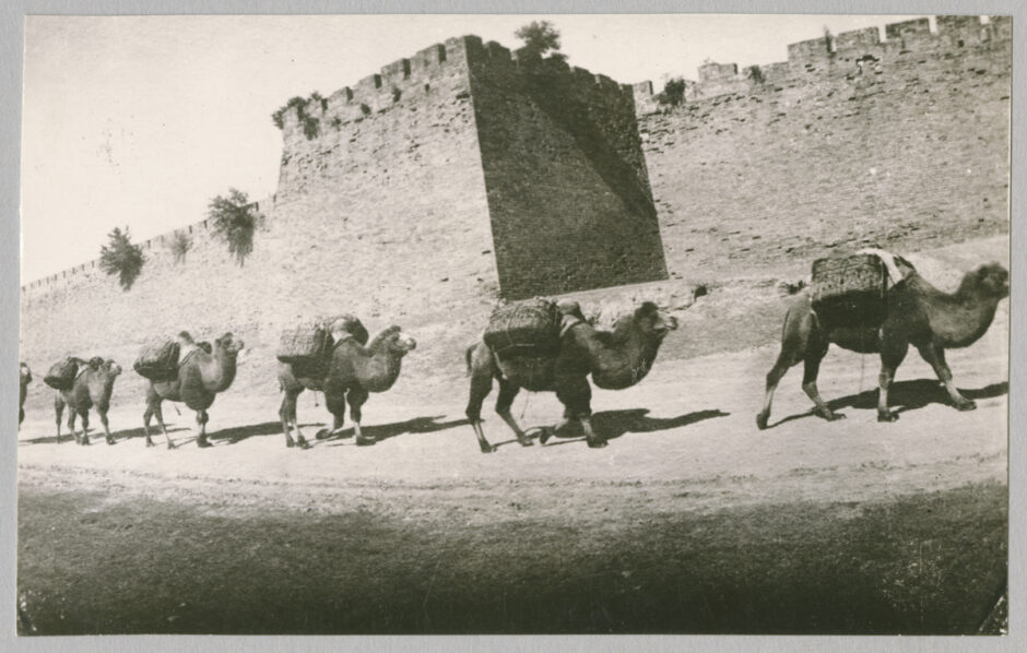 Historische Fotografier Kamelkarawane vor der Stadtmauer